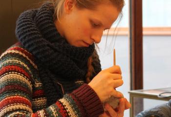 Atelier peinture paléolithique